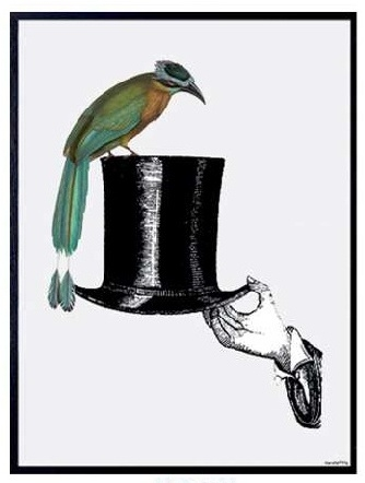 "VANILLA FLY ""HAT WITH BIRD""POSTER CON CORNICE NERA  20X25"
