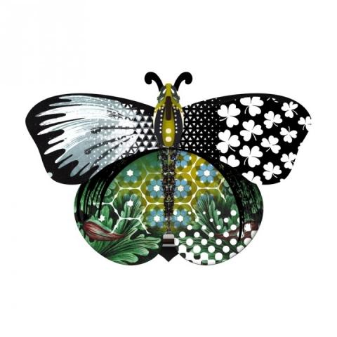 "MIHO farfalla ""Northern star"""